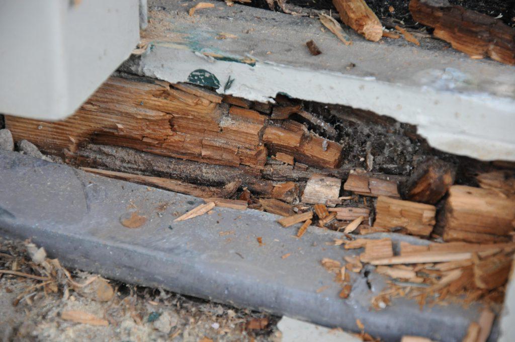 houtrot-herstellen-voorkomen-herkennen
